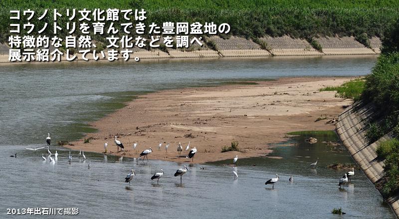 出石川2013年カラー版(テキスト入り)