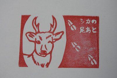 田んぼ200119-1