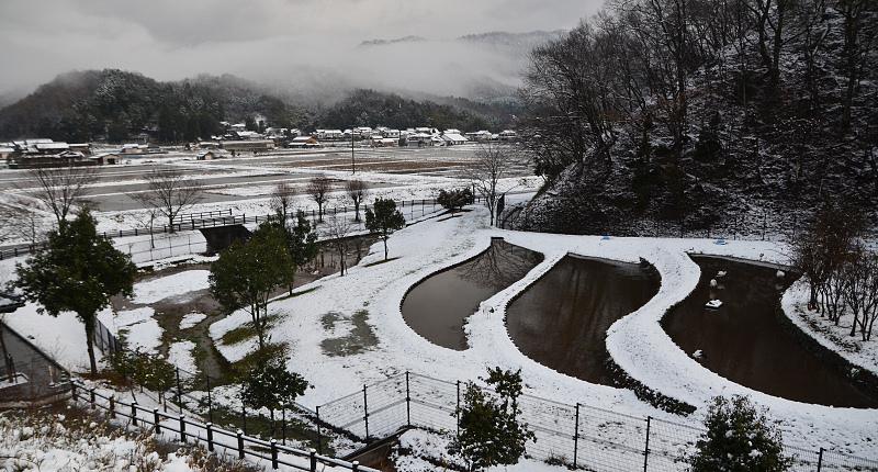西公開雪景色