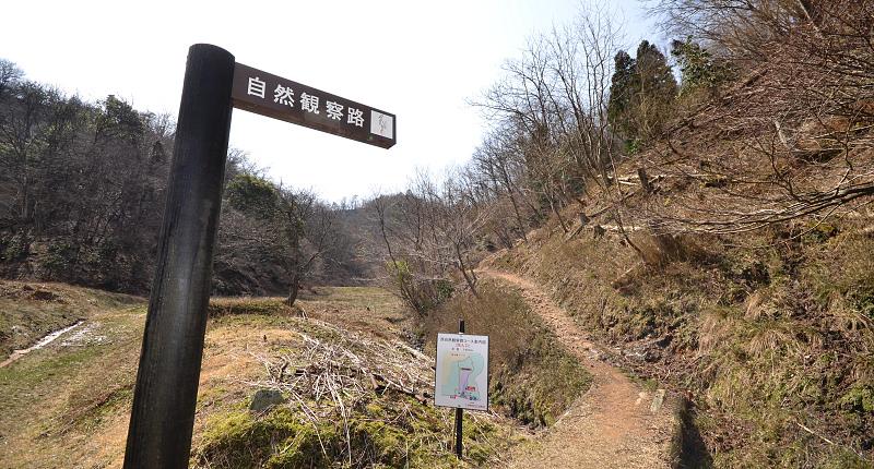 西自然観察路1