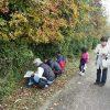 植物観察会11月度(実施報告)