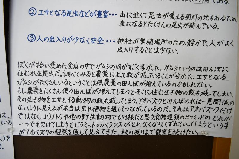 aobazuku180212-3