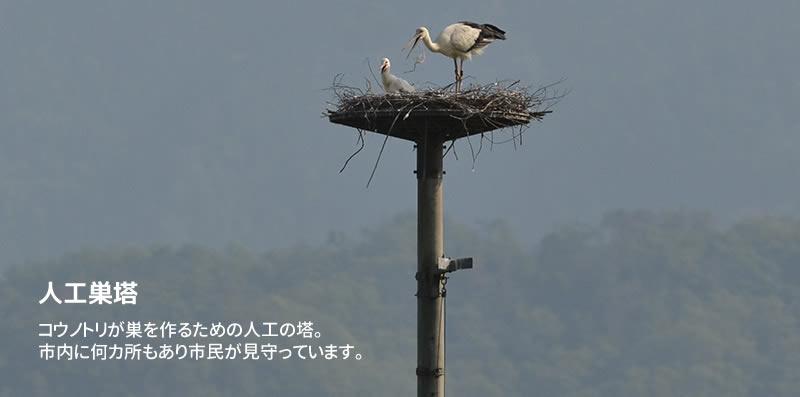 コウノトリが巣を作るための人工の塔。 市内に何カ所もあり市民が見守っています。