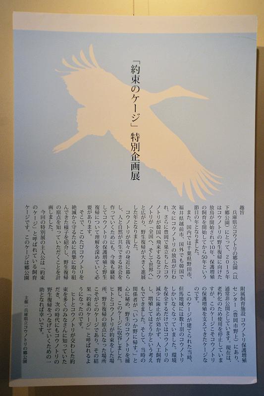 kikaku160221-2