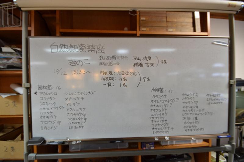 kinoko151012-9