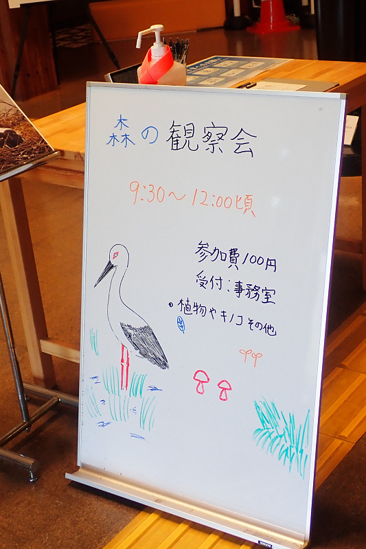 morikansatu200812-1