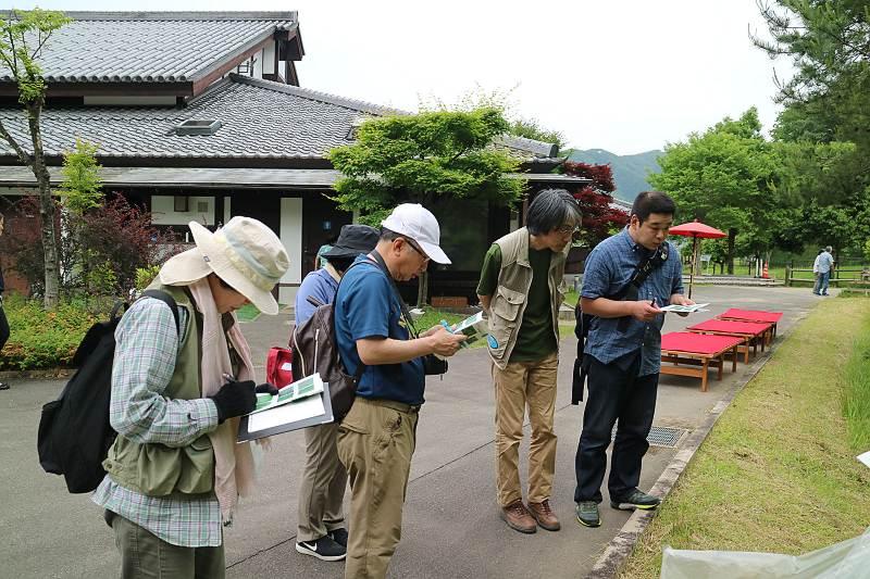 shokubutu180527-3