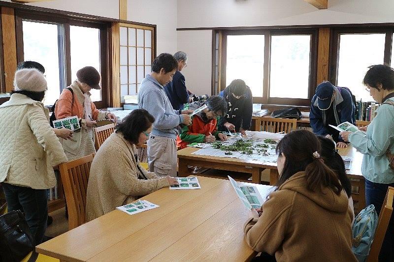 shokubutu190224-3