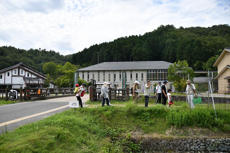 shokubutu190825-4