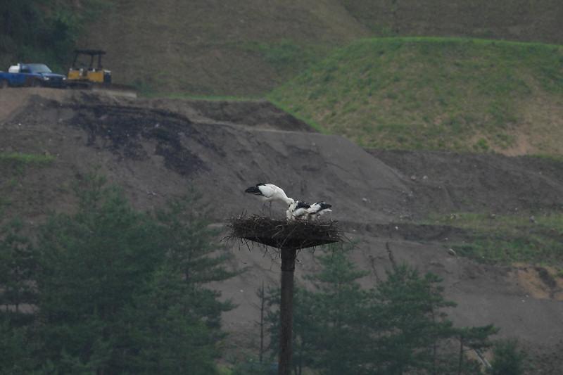 sizenkansatu200614-11