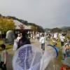 田んぼの学校2015年10月(実施報告)