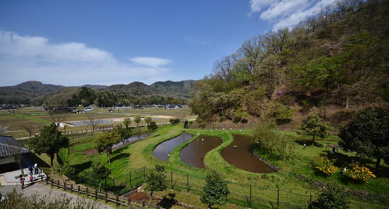 兵庫県立コウノトリの郷公園 | ...